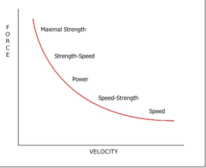 Force-Velocity-Curve 1